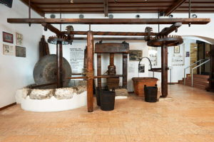 Museo dell'Olio d'Oliva Cisano - © Museum