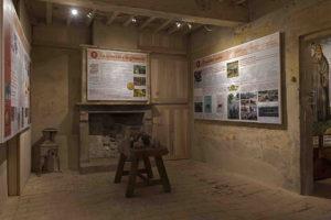 Ausstellungssaal zu Schweinefutter und -rassen-© Museum (E. Fornaciari)