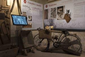 Ausstellungssaal zum Beruf des Schweineschlachters-© Museum (E. Fornaciari)