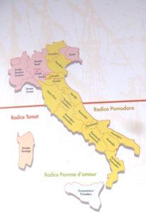 Die verschiedenen Begriffe für das Wort Tomate in den Regionen Italiens