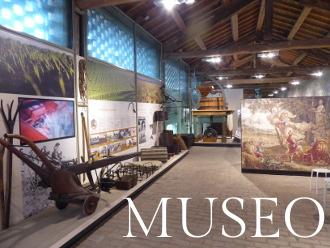 Lebensmittel-Museen